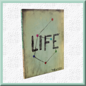 Life in 6 Words Outreach Book