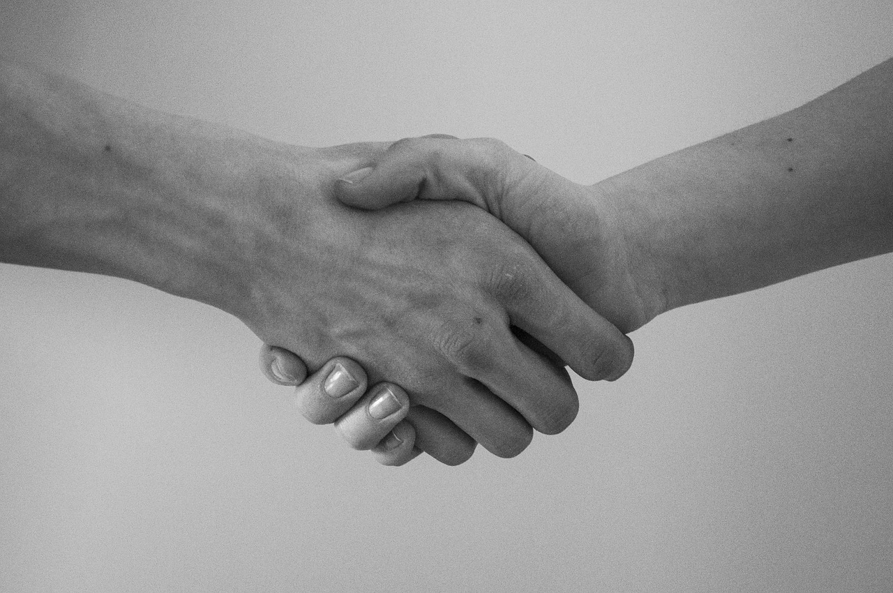 Loyalty - Hand Shake
